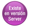 Version Server